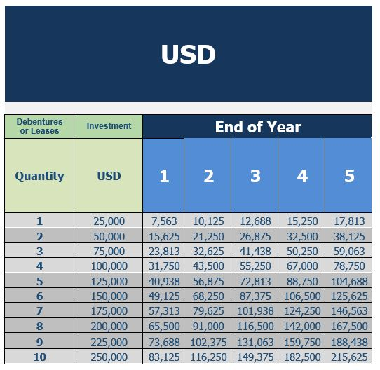 USD Year on year